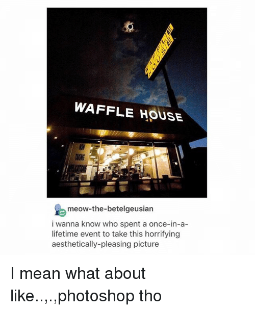 Photoshop, Tumblr, and Waffle House: WAFFLE HOUSE  TAONG  meow-the-betelgeusian  i wanna know who spent a once-in-a-  lifetime event to take this horrifying  aesthetically-pleasing picture I mean what about like..,.,photoshop tho