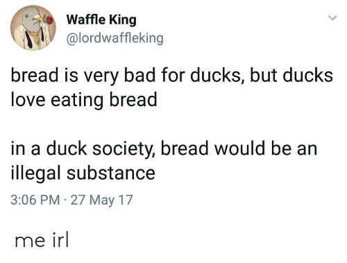 Bad, Love, and Duck: Waffle King  @lordwaffleking  bread is very bad for ducks, but ducks  love eating bread  in a duck society, bread would be an  illegal substance  3:06 PM 27 May 17 me irl