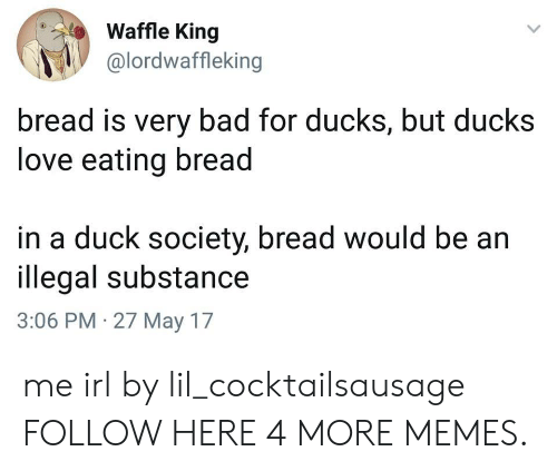 Bad, Dank, and Love: Waffle King  @lordwaffleking  bread is very bad for ducks, but ducks  love eating bread  in a duck society, bread would be an  illegal substance  3:06 PM 27 May 17 me irl by lil_cocktailsausage FOLLOW HERE 4 MORE MEMES.