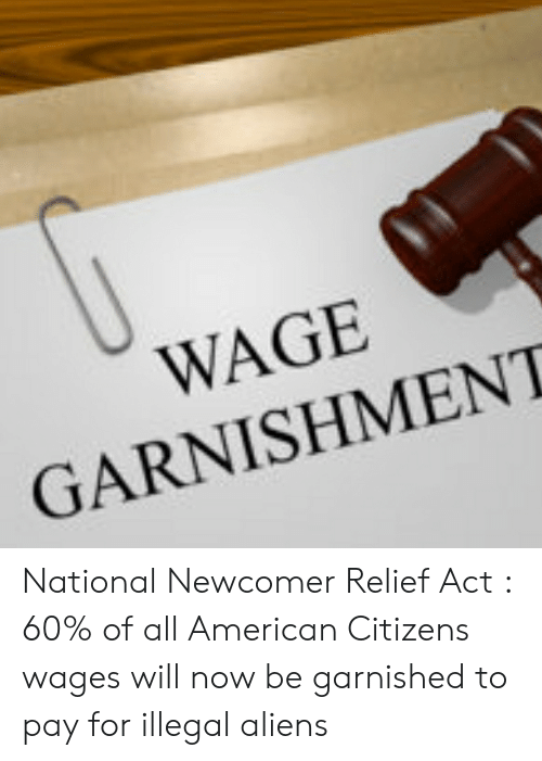 Aliens, American, and Act: WAGE  GARNISHMENT National Newcomer Relief Act : 60% of all American Citizens wages will now be garnished to pay for illegal aliens