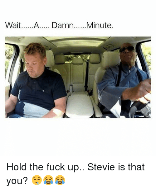 Memes, 🤖, and Damned: Wait  A..... Damn  Minute Hold the fuck up.. Stevie is that you? 🤤😂😂