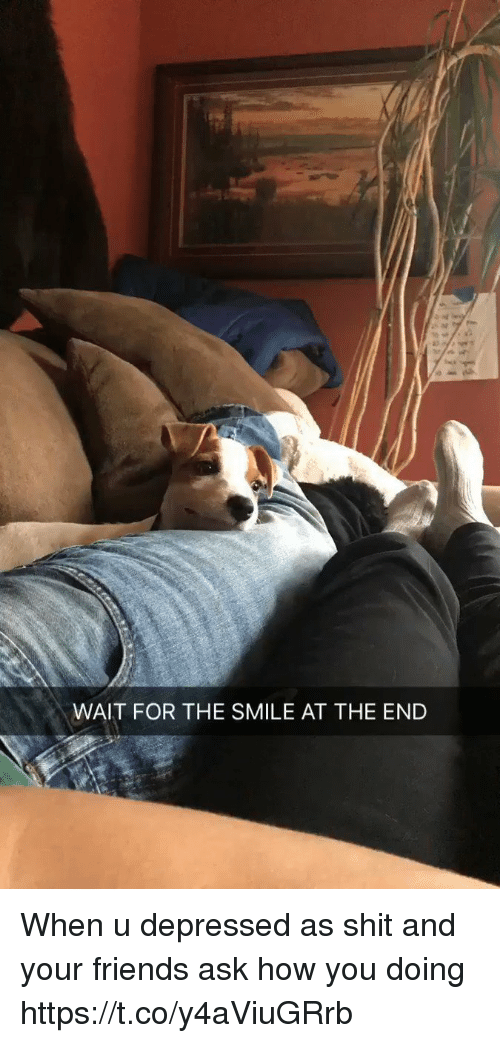 Friends, Shit, and Smile: WAIT FOR THE SMILE AT THE END When u depressed as shit and your friends ask how you doing https://t.co/y4aViuGRrb