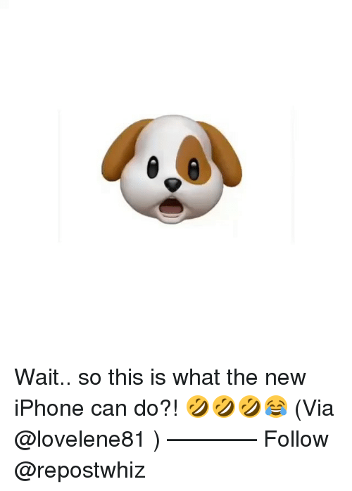 Iphone, Memes, and New Iphone: Wait.. so this is what the new iPhone can do?! 🤣🤣🤣😂 (Via @lovelene81 ) —�—�—�—� Follow @repostwhiz