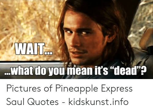 WAIT What Do You Niean It\'s Dead\'? Pictures of Pineapple ...