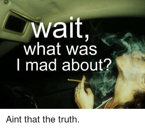 Memes, 🤖, and Aint That the Truth: wait,  what was  I mad about? Aint that the truth.