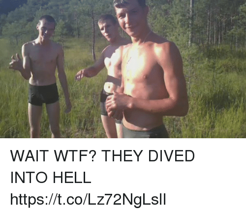 Memes, Wtf, and Hell: WAIT WTF? THEY DIVED INTO HELL https://t.co/Lz72NgLslI