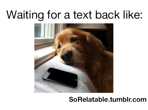 waiting for a text back like sorelatable tumblr com 24627327 ✅ 25 best memes about waiting for a text back waiting for a