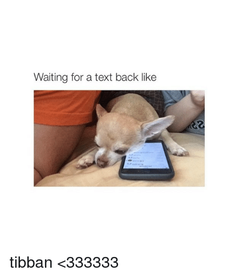 Texting, Text, and Text Back: Waiting for a text back like tibban <333333