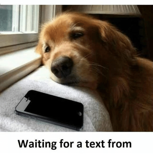 Waiting for a Text From | Meme on SIZZLE