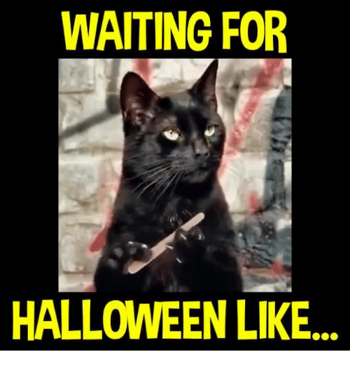 ✅ 25+ Best Memes About Waiting for Halloween | Waiting for ...