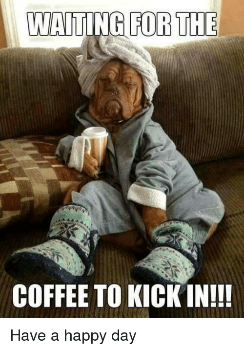 Waiting For The Coffee To Kick In Have A Happy Day Meme On Meme
