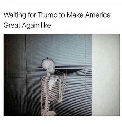 America, Memes, and Trump: Waiting for Trump to Make America  Great Again like