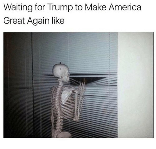 America, Trump, and Waiting...: Waiting for Trump to Make America  Great Again like