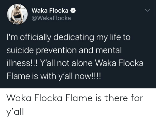 Waka Flocka, Flocka, and Waka: Waka Flocka Flame is there for y'all