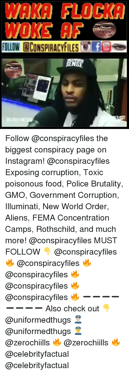 Af, Food, and Illuminati: WAKA FLOCKA  WOKE AF  FOLLOW CONSPIRACYFILESfes Follow @conspiracyfiles the biggest conspiracy page on Instagram! @conspiracyfiles Exposing corruption, Toxic poisonous food, Police Brutality, GMO, Government Corruption, Illuminati, New World Order, Aliens, FEMA Concentration Camps, Rothschild, and much more! @conspiracyfiles MUST FOLLOW 👇 @conspiracyfiles 🔥 @conspiracyfiles 🔥 @conspiracyfiles 🔥 @conspiracyfiles 🔥 @conspiracyfiles 🔥 ➖➖➖➖➖➖➖➖ Also check out 👇 @uniformedthugs 👮🏻 @uniformedthugs 👮 @zerochiills 🔥 @zerochiills 🔥 @celebrityfactual @celebrityfactual