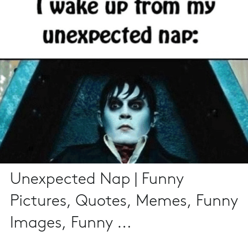 Funny, Memes, and Images: wake up from my  unexpected nap: Unexpected Nap | Funny Pictures, Quotes, Memes, Funny Images, Funny ...