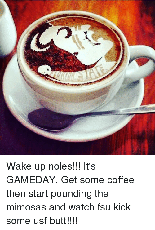 Wake Up Noles!!! It's GAMEDAY Get Some Coffee Then Start Pounding