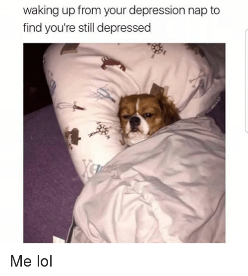 Funny, Lol, and Depression: waking up from your depression nap to  find you're still depressed Me lol