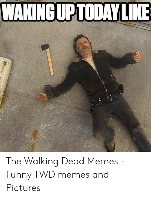 Wakinguptoday Like The Walking Dead Memes Funny Twd Memes And