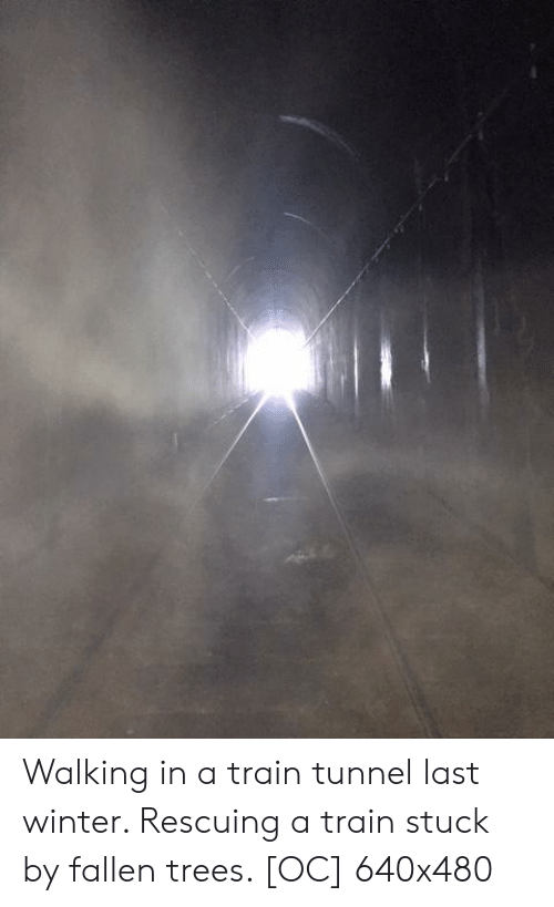 Winter, Train, and Trees: Walking in a train tunnel last winter. Rescuing a train stuck by fallen trees. [OC] 640x480