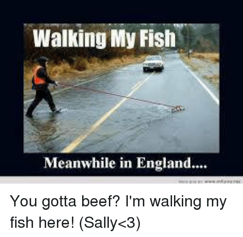 25 best memes about walking my fish walking my fish memes for Sally t fishing