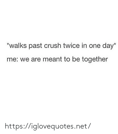Crush, Net, and One: *walks past crush twice in one day*  me: we are meant to be together https://iglovequotes.net/