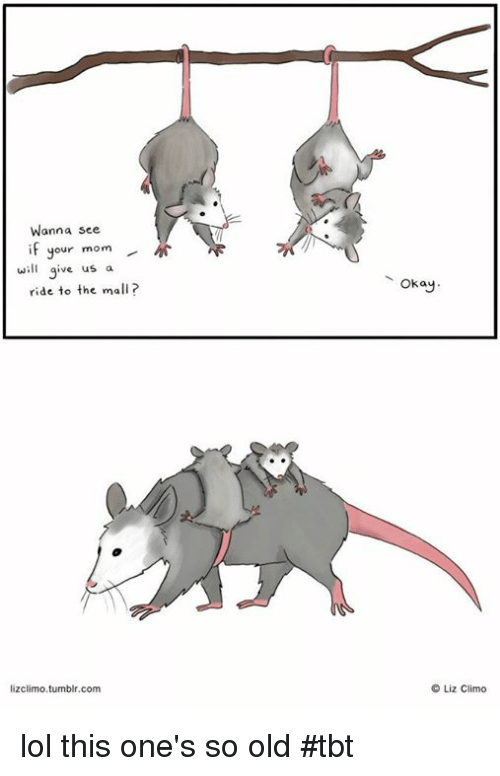 Lol, Memes, and Tbt: Wanna see  if your mom  will give us  a  ride to the ma  lizclimo tumblr.com  okay.  Liz Climo lol this one's so old #tbt