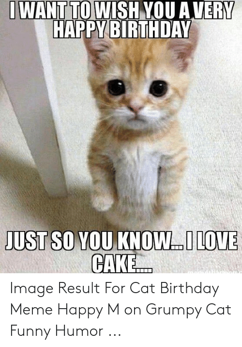 Outstanding Want To Wish You Avery Happy Birthday Just So Vou Know Love Cake Funny Birthday Cards Online Elaedamsfinfo