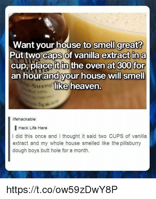 Butt, Heaven, and Life: Want your house to smell great?  Put two Caps of vanilla extract in a  cup, place it in the oven at 300 for  an hourand your house will smell  ike heaven.  Streng  lifehackable  I Hack Life Here  I did this once and I thought it said two CUPS of vanilla  extract and my whole house smelled like the pillsburry  dough boys butt hole for a month. https://t.co/ow59zDwY8P