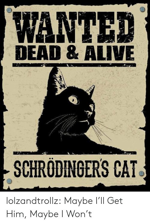 Alive, Tumblr, and I Won: WANTED  DEAD & ALIVE  SCHRODINGERS CAT lolzandtrollz:  Maybe I'll Get Him, Maybe I Won't