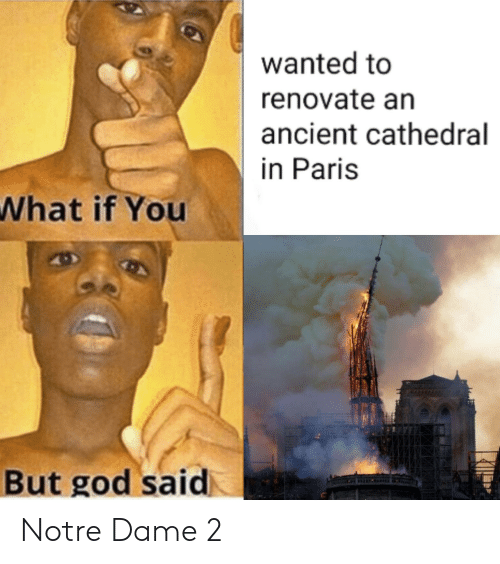 Wanted to Renovate an Ancient Cathedral N Paris What if You