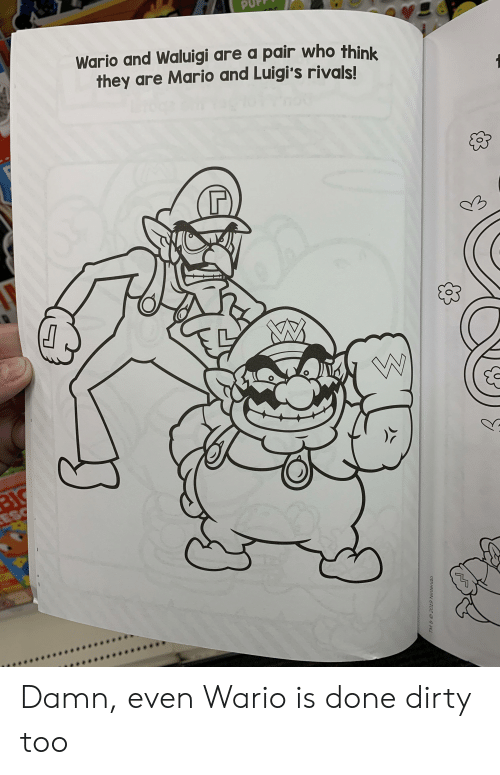 Wario And Waluigi Are A Pair Who Think They Are Mario And