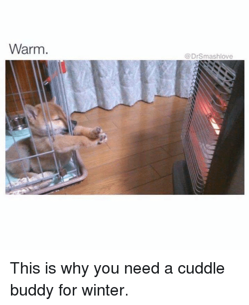 I Want To Cuddle With You Quotes: Search Winter And Meme Memes On SIZZLE