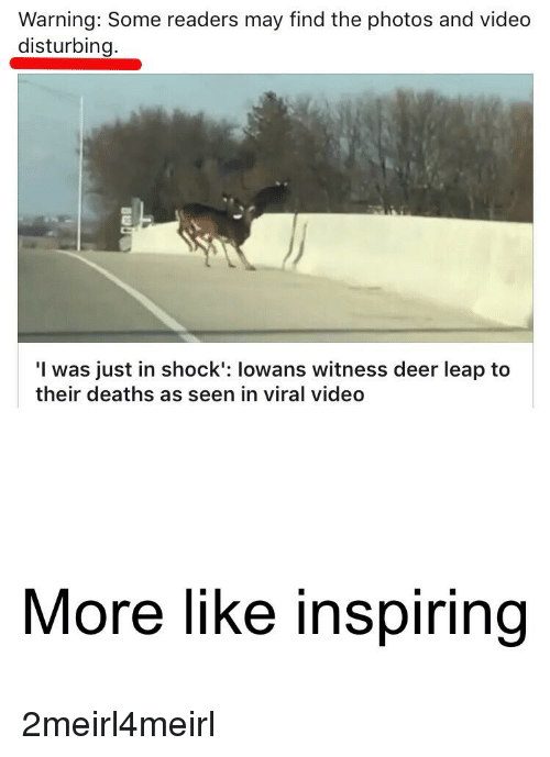 Deer, Video, and Deaths: Warning: Some readers may find the photos and video  disturbing  I was just in shock': lowans witness deer leap to  their deaths as seen in viral video  More like inspiring
