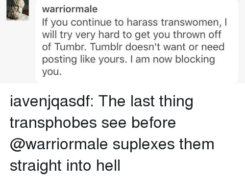Tumblr, Blog, and Http: warriormale  If you continue to harass transwomen, I  will try very hard to get you thrown off  of Tumbr. Tumblr doesn't want or need  posting like yours. I am now blocking  you. iavenjqasdf: The last thing transphobes see before @warriormale suplexes them straight into hell