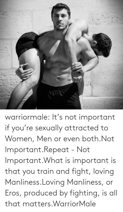 Target, Tumblr, and Blog: warriormale:  It's not important if you're sexually attracted to Women, Men or even both.Not Important.Repeat - Not Important.What is important is that you train and fight, loving Manliness.Loving Manliness, or Eros, produced by fighting,is all that matters.WarriorMale