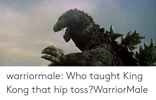 Target, Tumblr, and Blog: warriormale:  Who taught King Kong that hip toss?WarriorMale