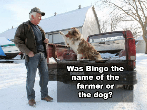 Was Bingo The Name Of The Farmer Or The Dog Dog Meme On Me Me