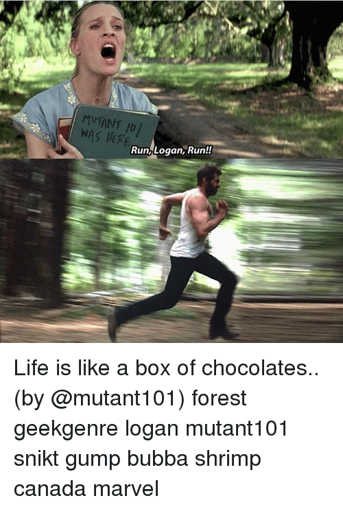 Was E Run Logan Run Life Is Like A Box Of Chocolates By Forest