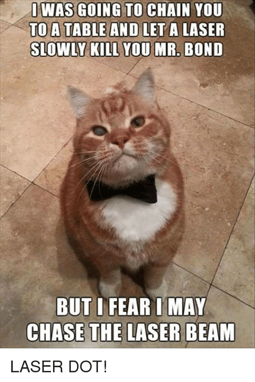 Memes, Chase, and 🤖: WAS GOING TO CHAIN YOU  TO A TABLE AND LET A LASER  SLOWLY KILL YOU MR, BOND  BUT I FEAR IMA  CHASE THE LASER BEAM LASER DOT!