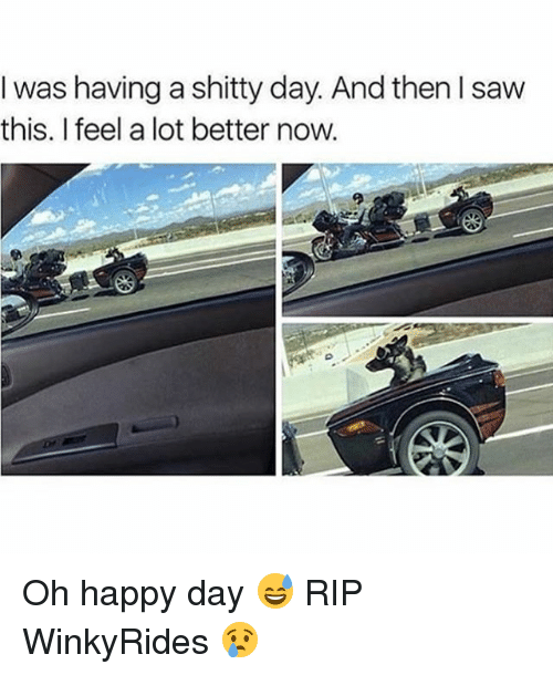 was having a shitty day and then saw this i 4814700 ✅ 25 best memes about oh happy day oh happy day memes