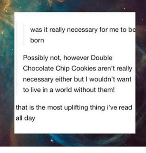 Memes, 🤖, and Chips: was it really necessary for me to be  born  Possibly not, however Double  Chocolate Chip Cookies aren't really  necessary either but l wouldn't want  to live in a world without them!  that is the most uplifting thing i've read  all day