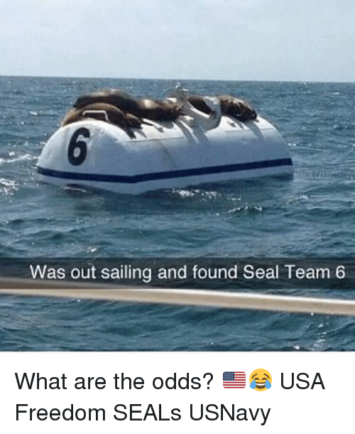 Memes, Seal, and Freedom: Was out sailing and found Seal Team 6 What are the odds? 🇺🇸😂 USA Freedom SEALs USNavy