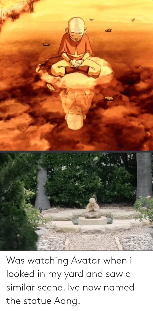 Saw, Aang, and Avatar: Was watching Avatar when i looked in my yard and saw a similar scene. Ive now named the statue Aang.