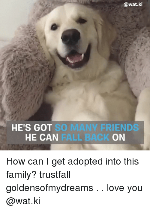 Fall, Family, and Friends: @wat.ki  HE'S GOT  SO MANY FRIENDS  HE CAN  FALL BACK  ON How can I get adopted into this family? trustfall goldensofmydreams . . love you @wat.ki