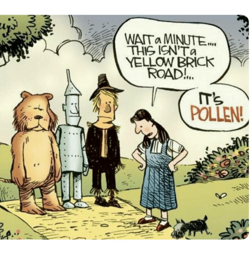 Memes, 🤖, and Brick: WATa MINUTE  THIS ICN'Ta  YELLOW BRICK  ROAD!...  POLLEN!