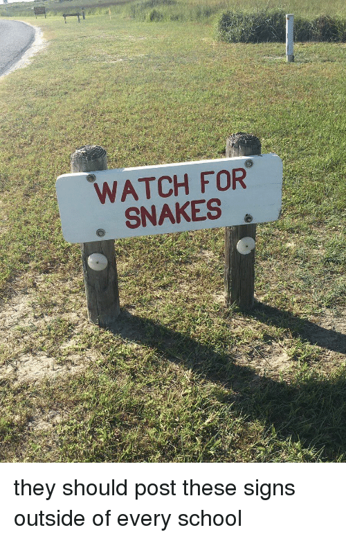 watch-for-snakes-they-should-post-these-