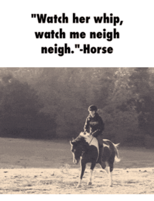 watch her whip watch me neigh neigh horse 14735615 ✅ 25 best memes about whip neigh neigh horse whip neigh neigh