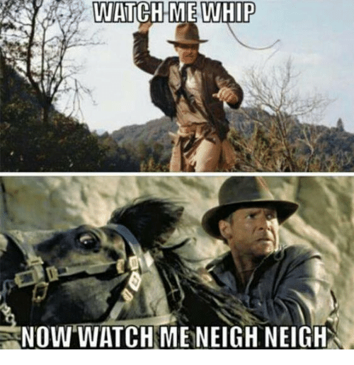 Memes, Watch Me, and Whip: WATCH ME WHIP  NOW WATCH MENEIGH, NEIGH
