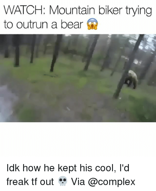 Complex, Funny, and Bear: WATCH: Mountain biker trying  to outrun a bear Idk how he kept his cool, I'd freak tf out 💀 Via @complex